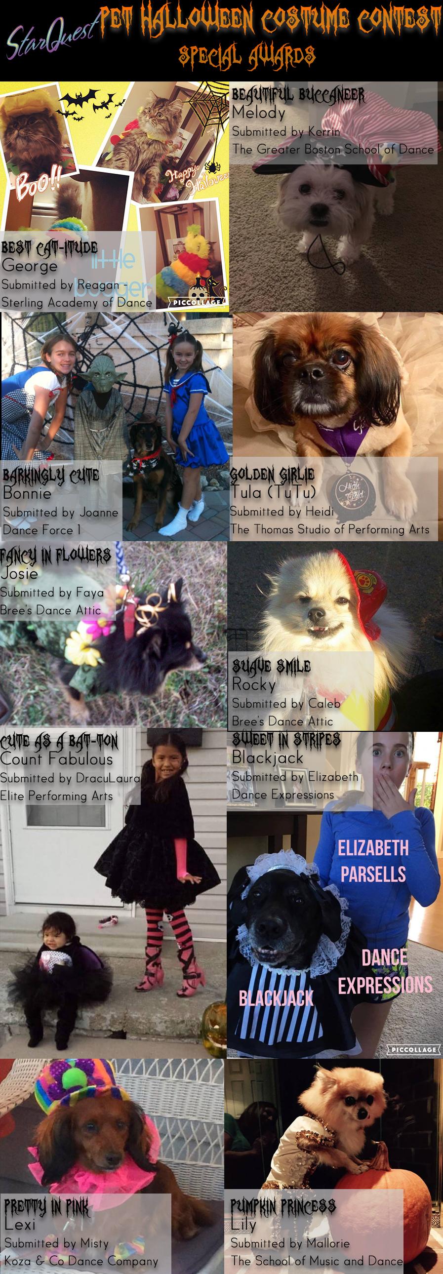 starquest, starquest dance, starquest dance competition, pet, halloween, costume, contest